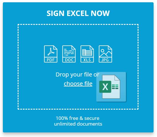 Insert Signature in Excel - Sign Excel Document - DigiSigner