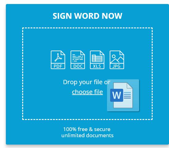 Sign Word Document Online Free | DigiSigner